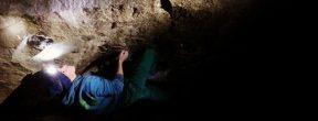 Jakob Schubert climbing in Magic Wood