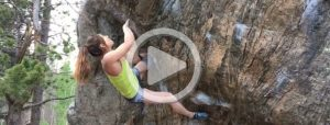 alex_puccio_bear_toss_v13-001